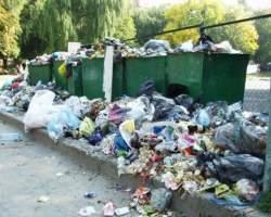 Чи підтримають  луцькі депутати прагнення зробити  місто чистішим?